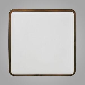 Настенно-потолочный светильник Nowodvorski 3121