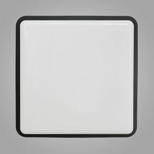 Настенно-потолочный светильник Nowodvorski 3124