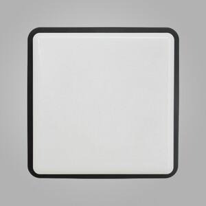 Настенно-потолочный светильник Nowodvorski 3245