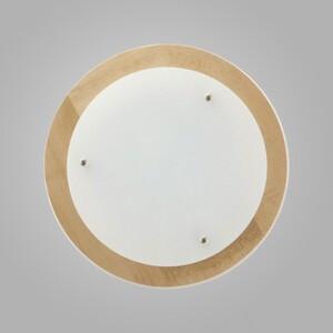 Настенно-потолочный светильник Nowodvorski 2905