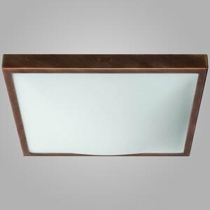 Настенно-потолочный светильник Nowodvorski 4306