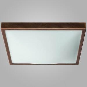 Настенно-потолочный светильник Nowodvorski 4305