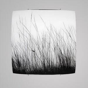 Настенно-потолочный светильник Nowodvorski 5652 black glass