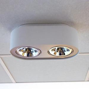 Накладной светильник Azzardo fh30532b white Pino