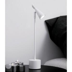 Настольная лампа Neptun table lamp 13012012020
