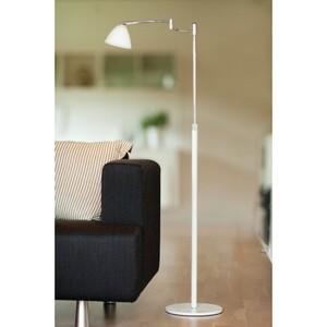 Торшер New swing dove floor lamp 14051050120