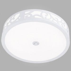 Настенно-потолочный светильник EGLO 91501