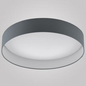 Настенно-потолочный светильник EGLO 93397 Palomaro