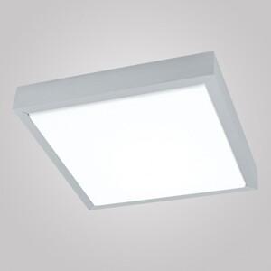 Настенно-потолочный светильник EGLO 93666 Udin 1