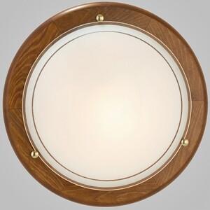 Настенно-потолочный светильник EGLO 3891 Ufo 1