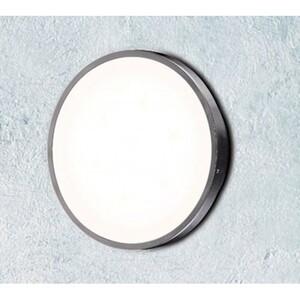 Настенно-потолочный светильник Maxlight Ari C0013