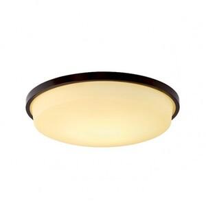 Настенно-потолочный светильник VIOKEF 3058001 Zoro