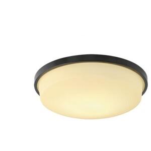 Настенно-потолочный светильник VIOKEF 3062801 Zoro