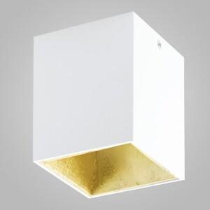 Накладной светильник EGLO Polasso 94498