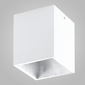 Накладной светильник EGLO Polasso 94499