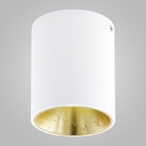 Накладной светильник EGLO Polasso 94503