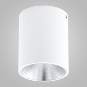 Накладной светильник EGLO Polasso 94504