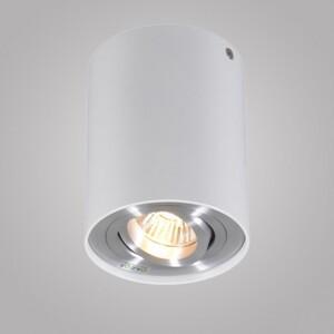 Накладной светильник Zumaline Rondoo 45519