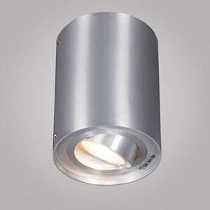 Накладной светильник Zumaline Rondoo 44805
