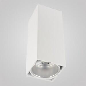 Накладной светильник Zumaline Vary 50616