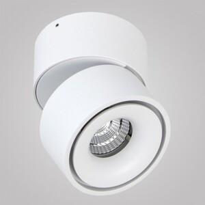 Накладной светильник Imperium Light 04110.01.01