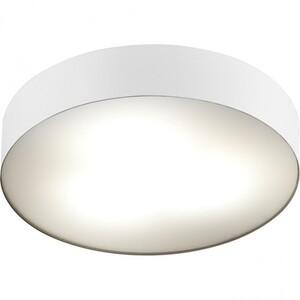 Настенно-потолочный светильник Nowodvorski 6724 ARENA WHITE