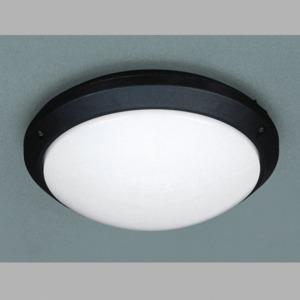 Настенно-потолочный светильник Massive 71416/01/30